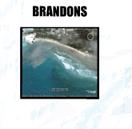 Surf Brandons Barbados